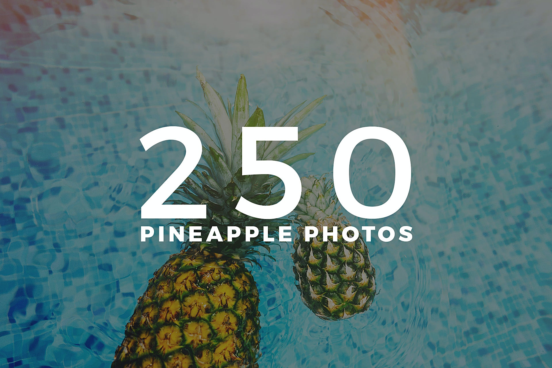 250 Pineapple Photos Collection by Pineapple Supply Co.