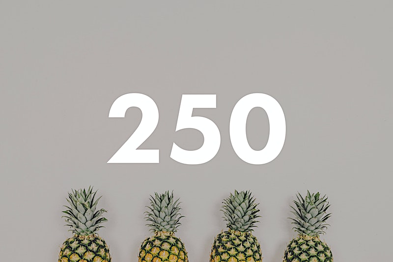 250 pineapple photo bundle