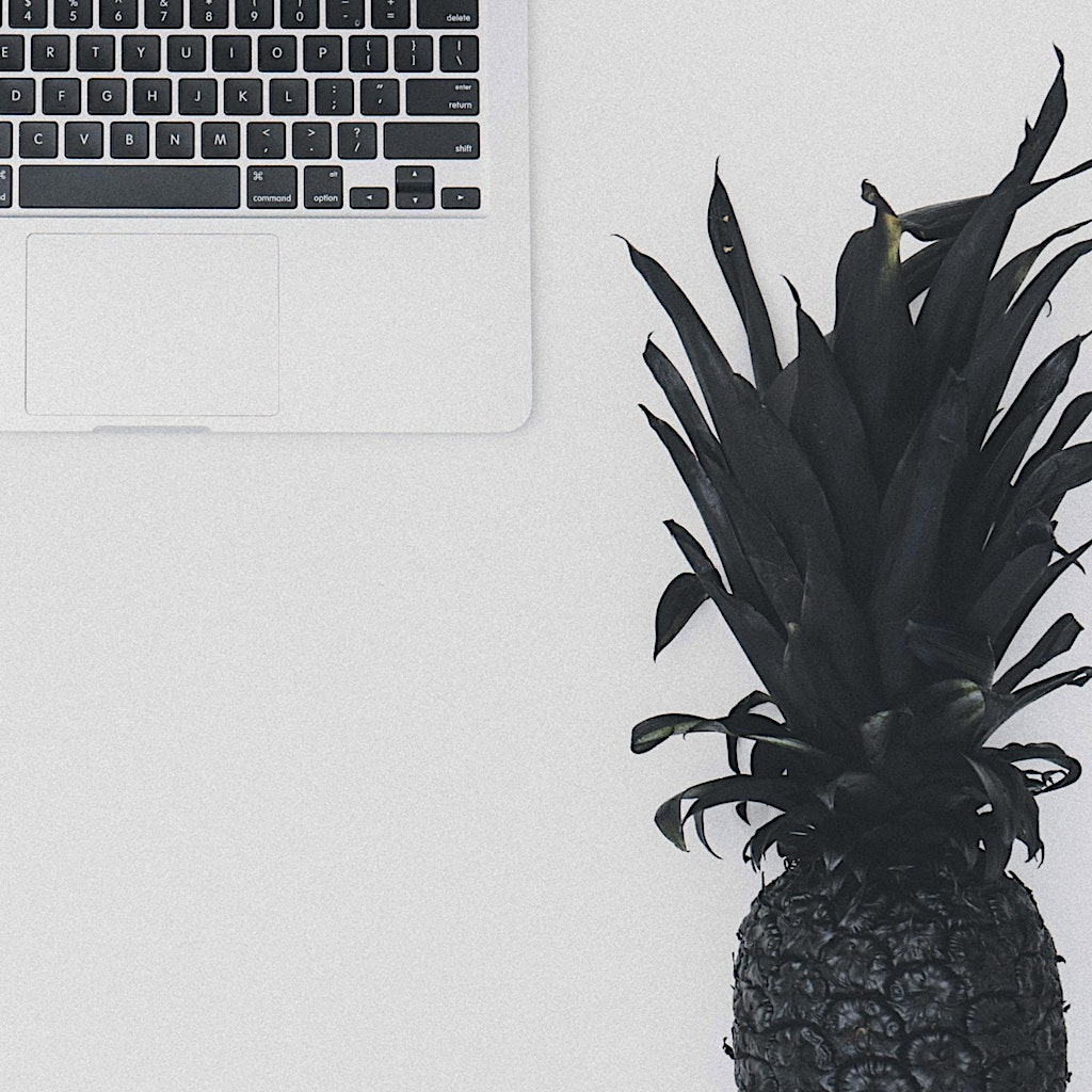 Pineapple painted black and laptop