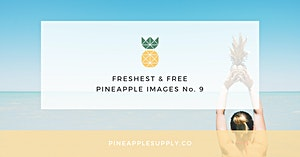 Freshest & Free Pineapple Images No. 9