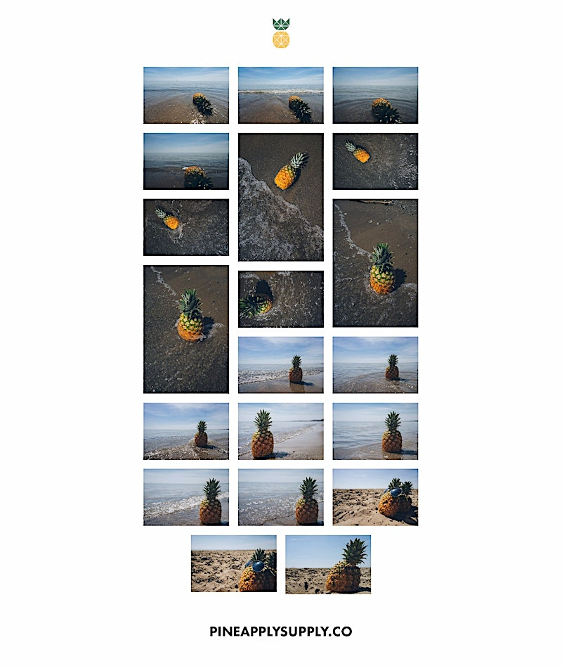 All the Pineapple Images in the Pineapple at the beach collection