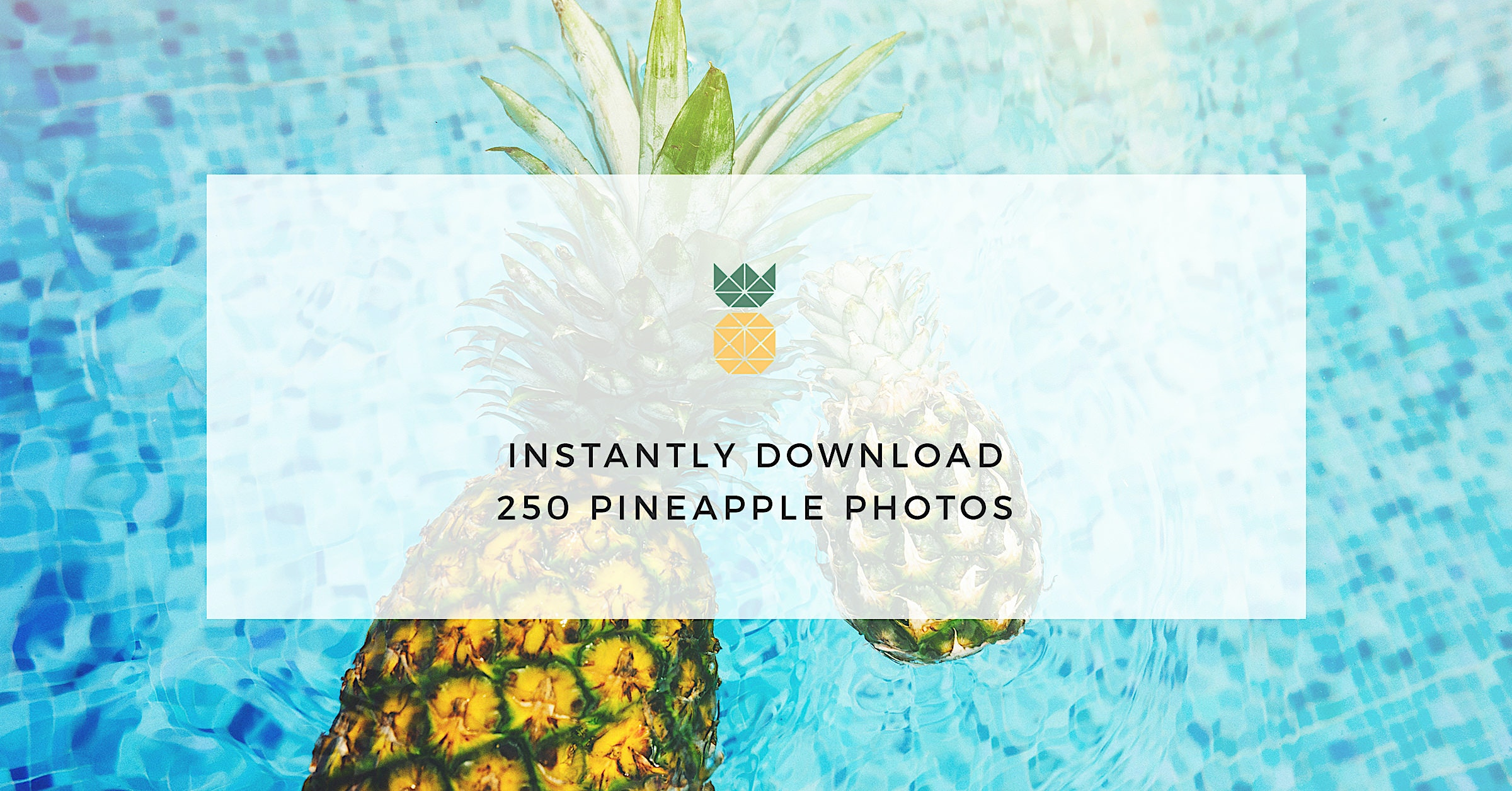 Instantly Download Our First 250 Pineapple Photos