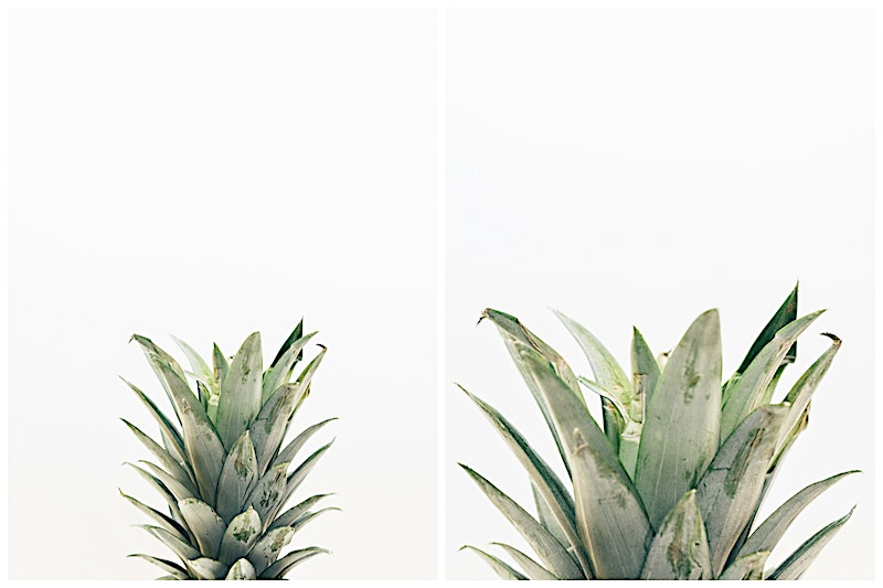 Isolated pineapple images in a photo collection