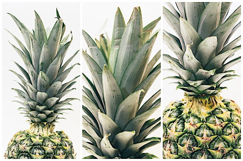 pineapple against a white background for free download