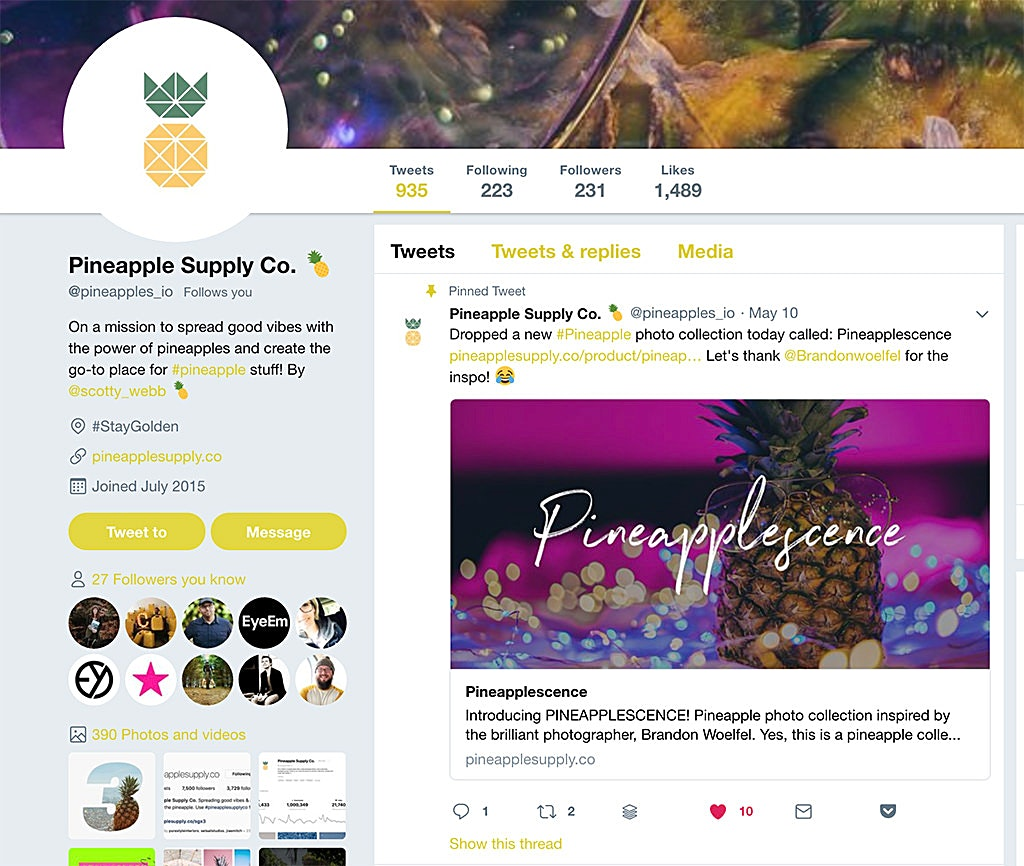 Pineapple Emoji displayed in the bio of a Twitter Profile