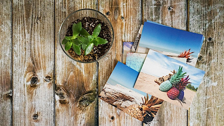 pineapple-mystery-postcards-1