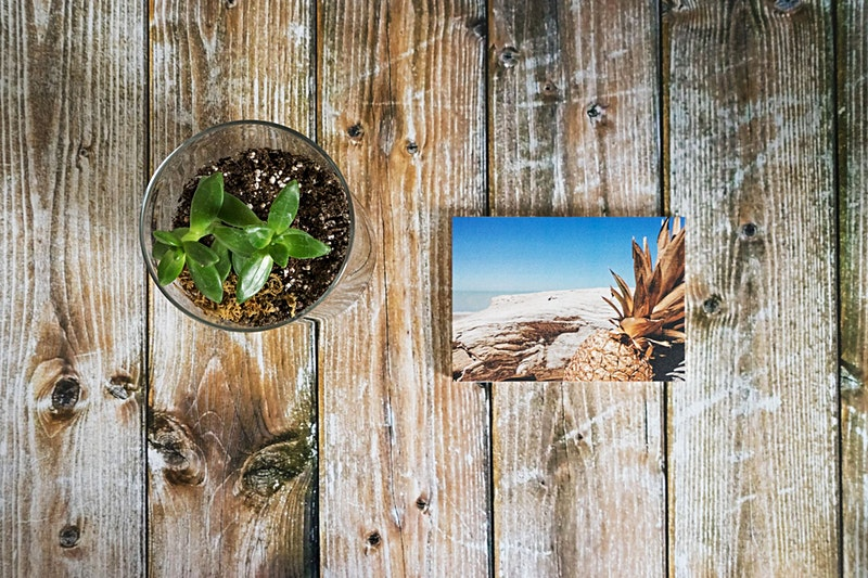 Pineapple Mystery Postcards for Sale