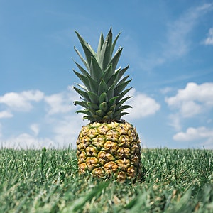 Hello World: Why Pineapples?