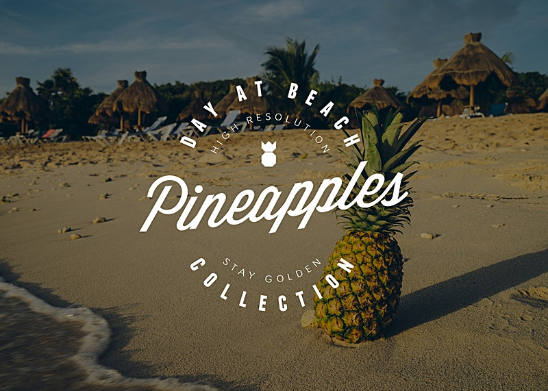 Pineapple at the beach in Mexico Photo Bundle