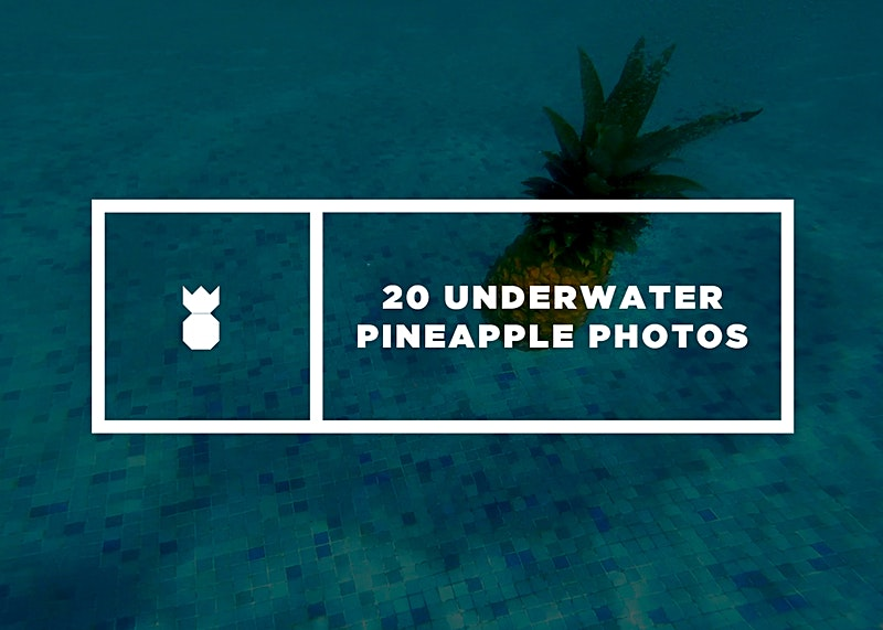 Underwater Pineapple Collection of Images