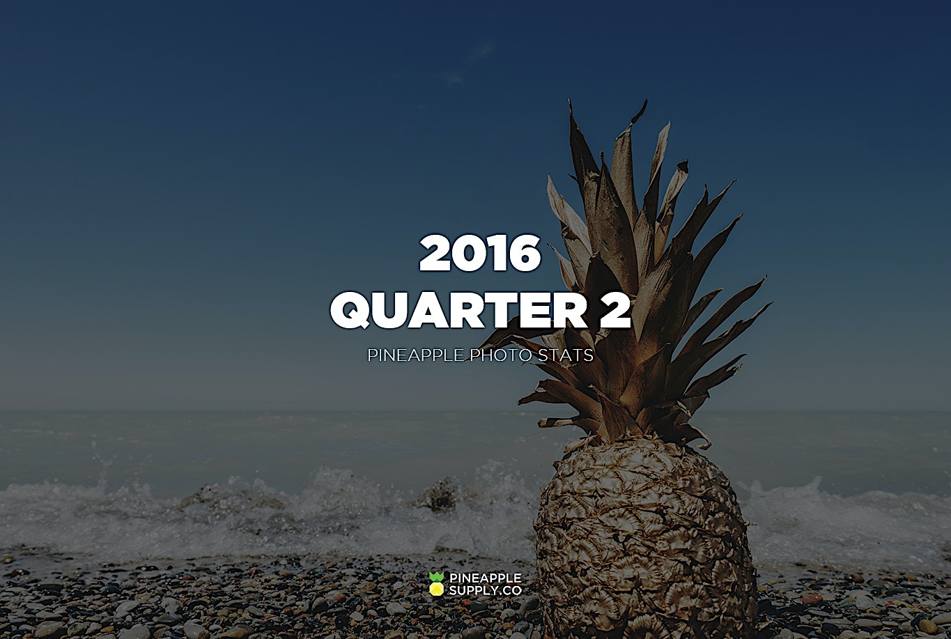 Pineapple Supply Co. Quarter 2 Metrics