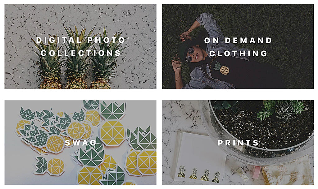 Pineapple Shop Categories on Pineapple Supply Co