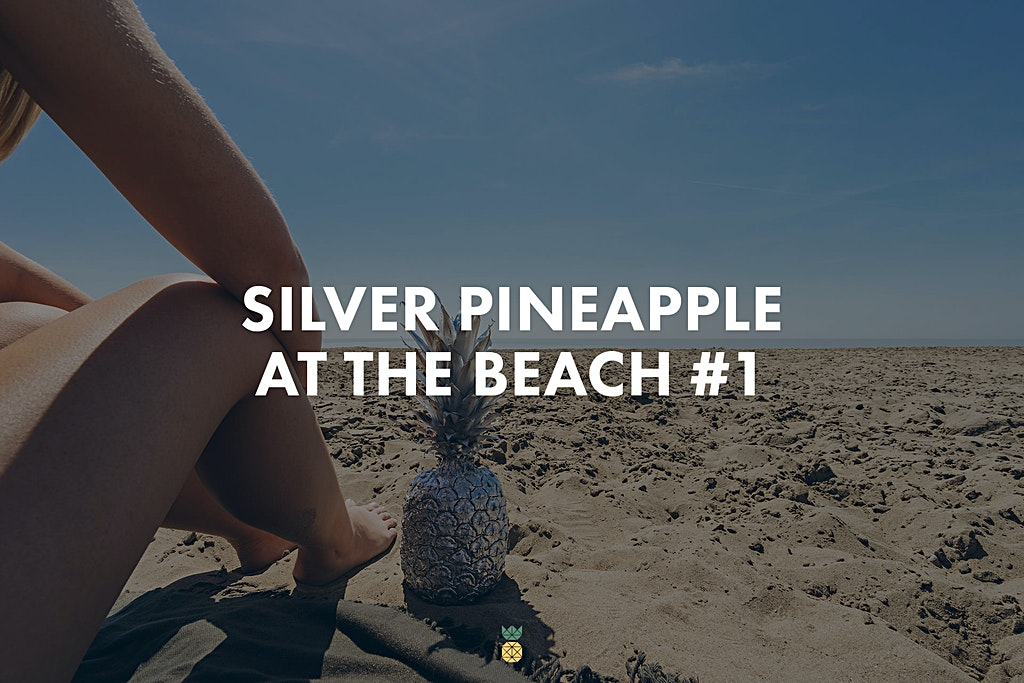 Silver Pineapple at the Beach - high-res photo collection
