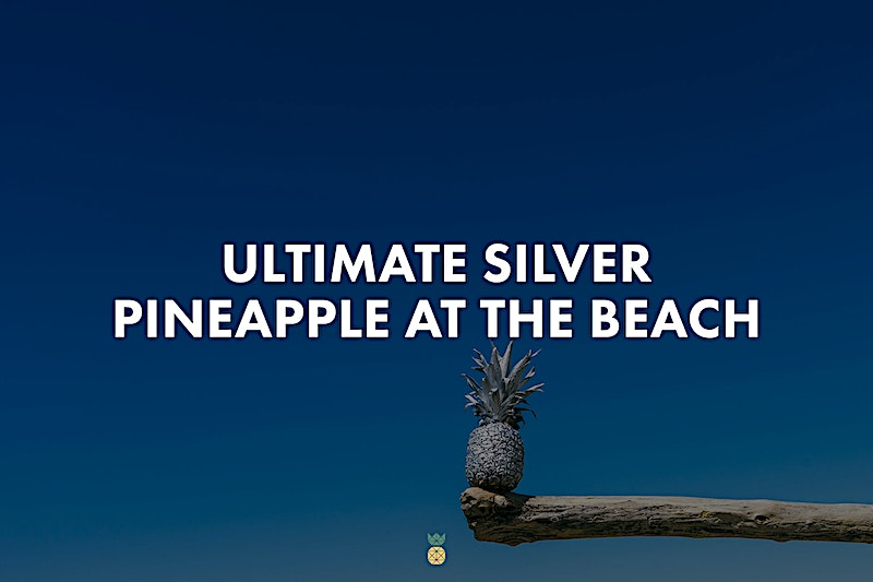 40 high-resolution photos of a silver pineapple at the beach in summer time